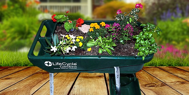 Life Cycle Gardens